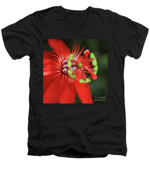 Passiflora Vitifolia Scarlet Red Passion Flower Men's V-Neck T-Shirt by Sharon Mau