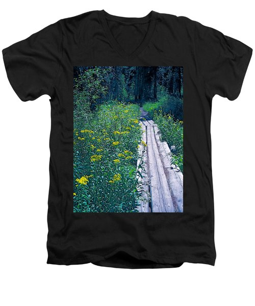 Path 4 Men's V-Neck T-Shirt