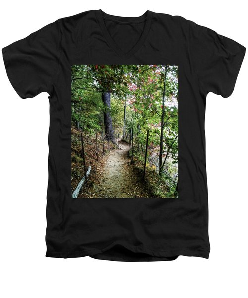 Path Along The Pond Men's V-Neck T-Shirt