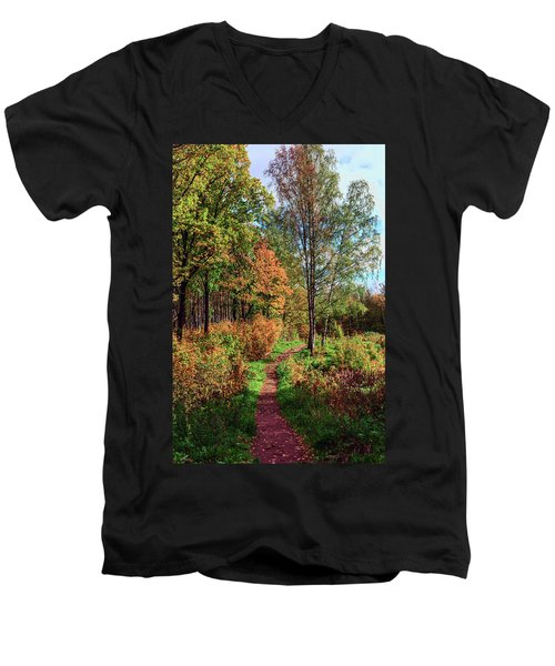 path in a beautiful country Park on a Sunny autumn day Men's V-Neck T-Shirt