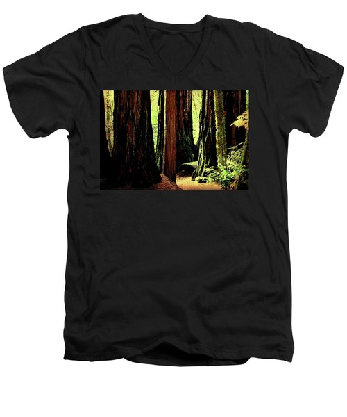 Path Through The Forest Edge . 7d5432 Men's V-Neck T-Shirt