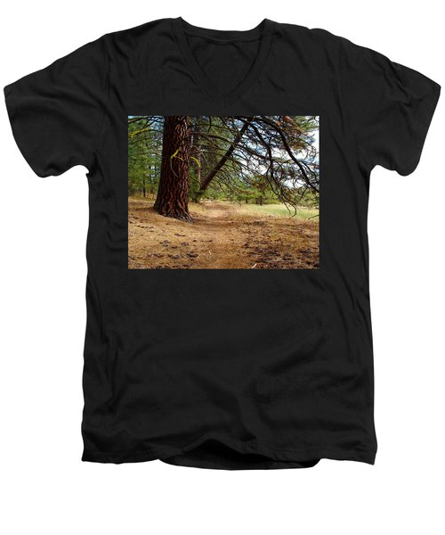 Path To Enlightenment 1 Men's V-Neck T-Shirt