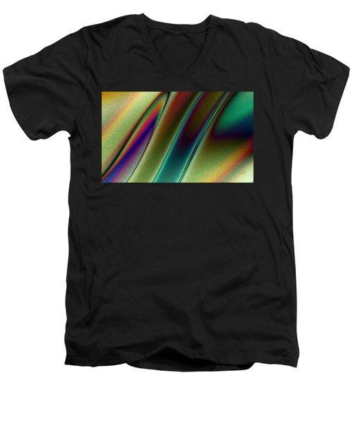 Pavo Real Men's V-Neck T-Shirt