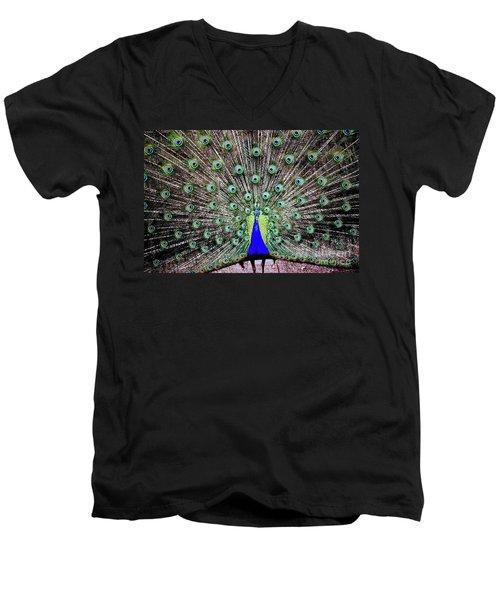 Men's V-Neck T-Shirt featuring the photograph Peacock by Vivian Krug Cotton