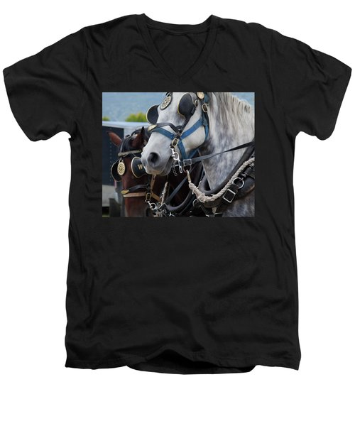Percheron Horses Men's V-Neck T-Shirt by Theresa Tahara