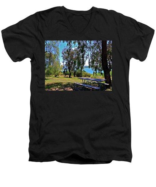Perfect Picnic Place Men's V-Neck T-Shirt