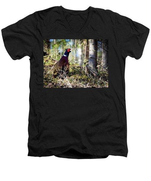 Pheasant In The Forest Men's V-Neck T-Shirt by Teemu Tretjakov