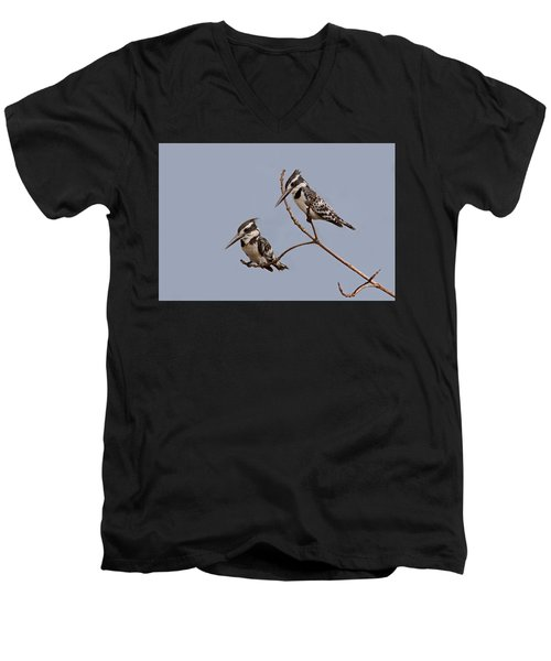 Pied Kingfisher Pair Men's V-Neck T-Shirt