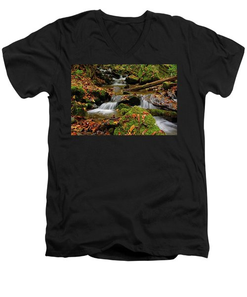 Pigeon Creek Cascades Men's V-Neck T-Shirt
