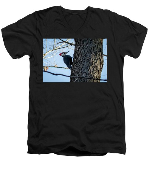 Pileated Woodpecker  Men's V-Neck T-Shirt