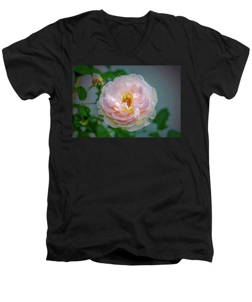 Pink Rose #c3 Men's V-Neck T-Shirt by Leif Sohlman