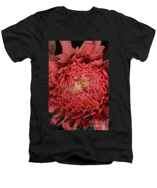 Pink Torch Ginger 1 Men's V-Neck T-Shirt