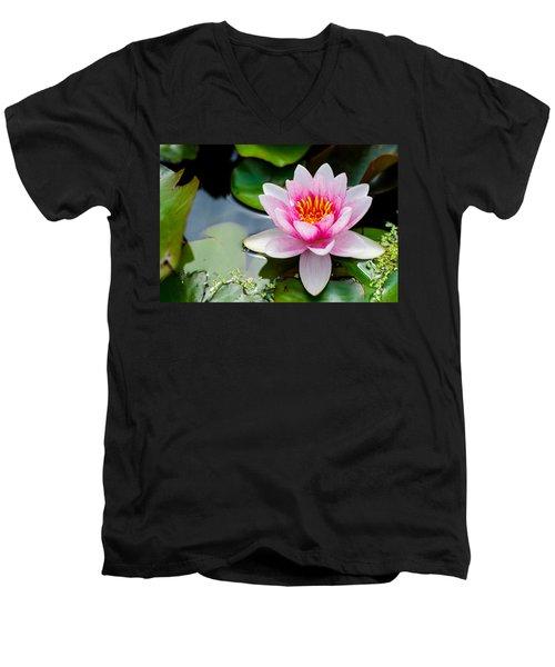 Pink Waterlily Men's V-Neck T-Shirt by Daniel Precht