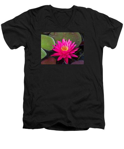 Pink Waterlily Garden Men's V-Neck T-Shirt