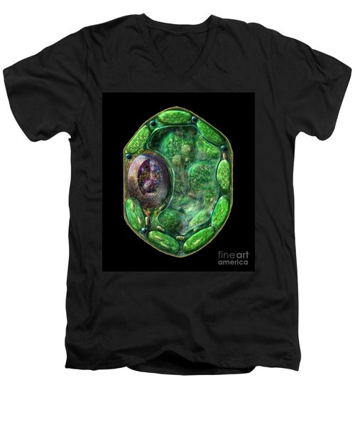 Men's V-Neck T-Shirt featuring the digital art Plant Cell by Russell Kightley