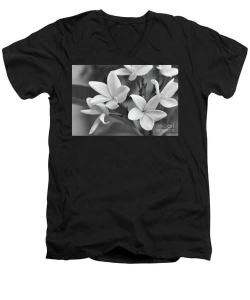Plumeria Flowers Men's V-Neck T-Shirt by Olga Hamilton