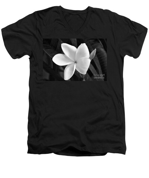 Plumeria In Monochrome Men's V-Neck T-Shirt