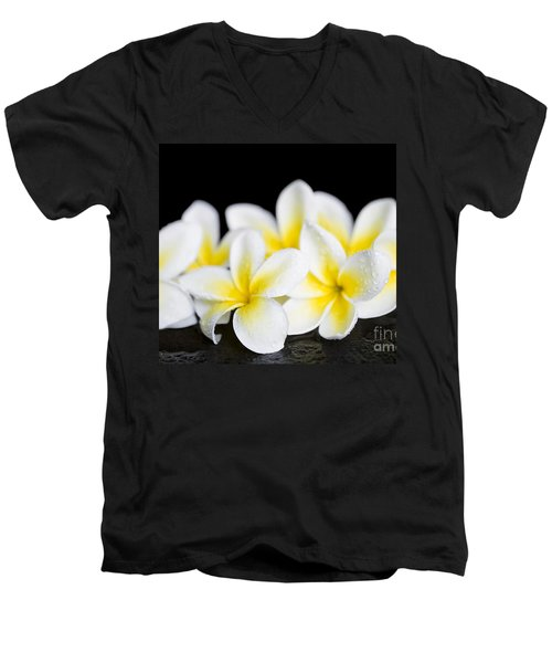 Men's V-Neck T-Shirt featuring the photograph Plumeria Obtusa Singapore White by Sharon Mau