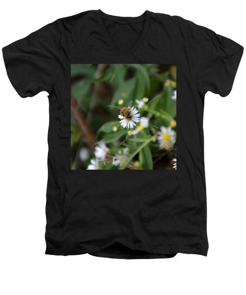 Pollinatin' Men's V-Neck T-Shirt