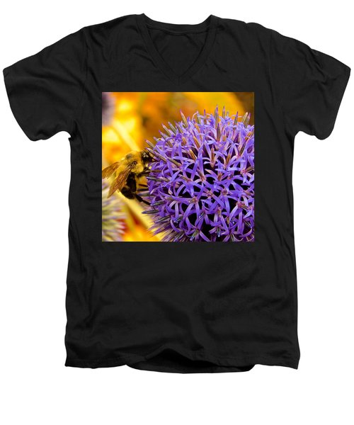 Pollination Men's V-Neck T-Shirt
