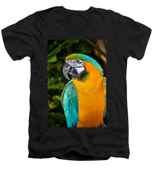 Polly II Men's V-Neck T-Shirt