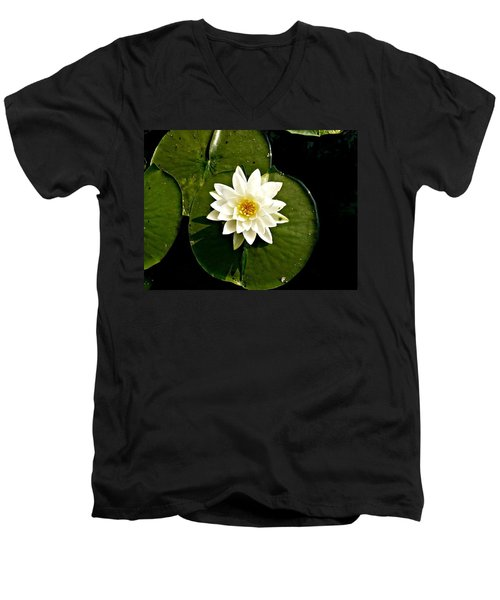 Pond Lily Men's V-Neck T-Shirt