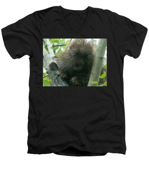 Porcupine Tree Men's V-Neck T-Shirt