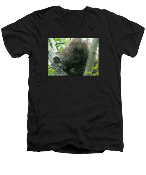 Porcupine Tree Men's V-Neck T-Shirt