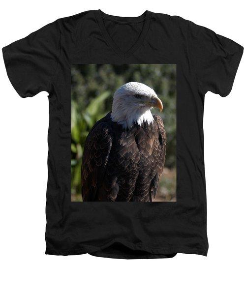 Portrait Bald Eagle  Men's V-Neck T-Shirt
