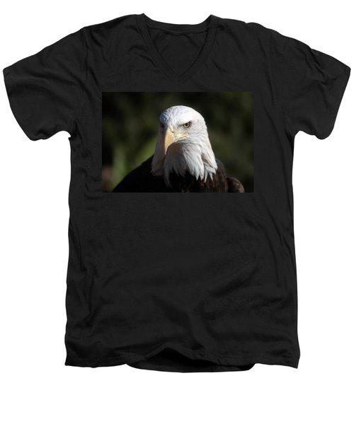 Portrait Of A Bald Eagle Men's V-Neck T-Shirt