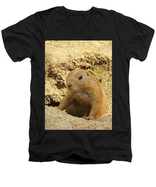 Prairie Dog Peek Men's V-Neck T-Shirt
