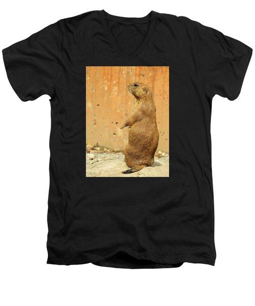 Prairie Dog Profile Men's V-Neck T-Shirt by Robin Regan