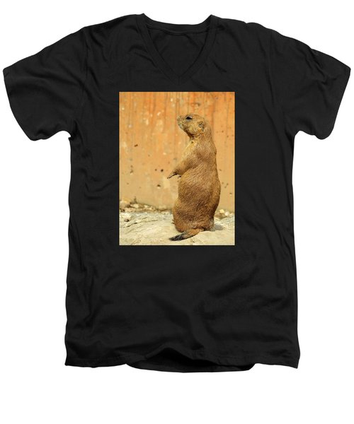 Prairie Dog Profile Men's V-Neck T-Shirt