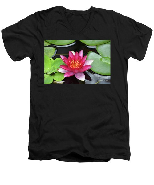 Pretty Red Water Lily Flowering In A Water Garden Men's V-Neck T-Shirt