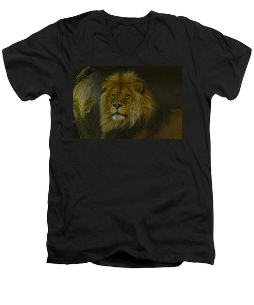 Pride Land Men's V-Neck T-Shirt
