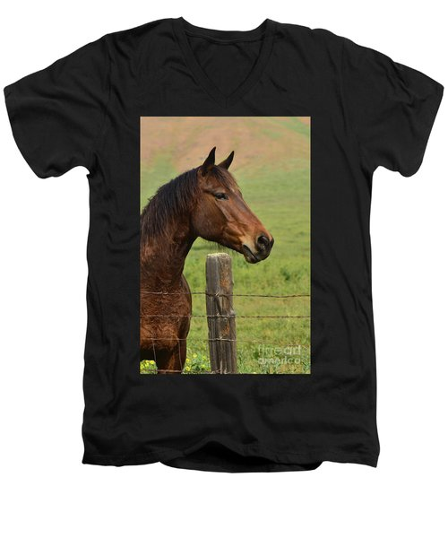 Men's V-Neck T-Shirt featuring the photograph Profile Of A Bay by Debby Pueschel