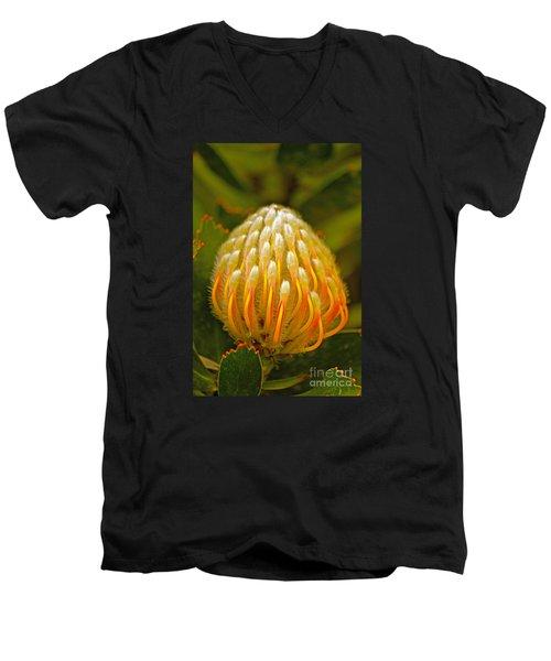 Proteas Ready To Blossom  Men's V-Neck T-Shirt by Michael Cinnamond