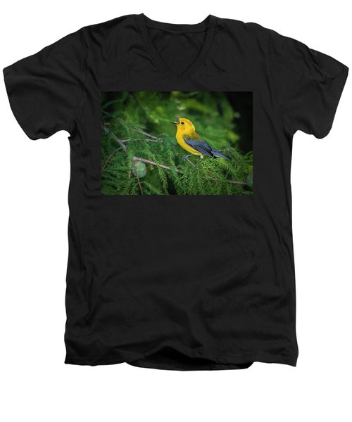 Prothonatory Warbler 9809 Men's V-Neck T-Shirt
