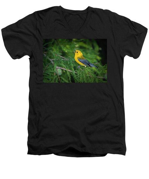 Prothonatory Warbler 9809 Men's V-Neck T-Shirt