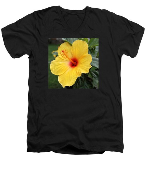 Pua Aloalo Men's V-Neck T-Shirt