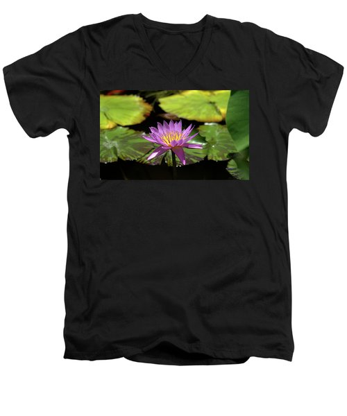 Purple And Yellow Water Lily Men's V-Neck T-Shirt