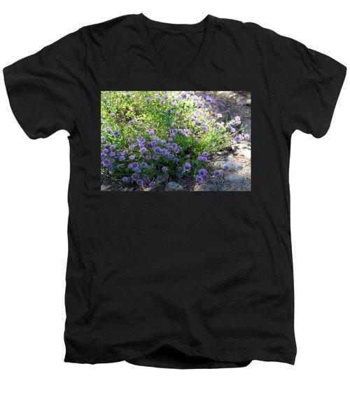 Purple Bachelor Button Flower Men's V-Neck T-Shirt