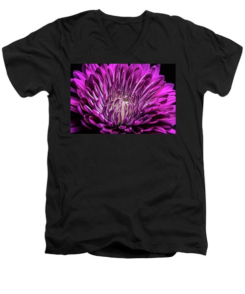 Purple Beauty Men's V-Neck T-Shirt