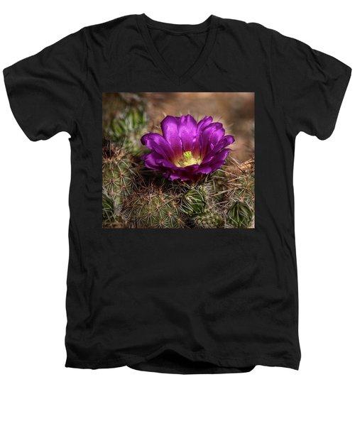 Men's V-Neck T-Shirt featuring the photograph Purple Cactus Flower  by Saija Lehtonen