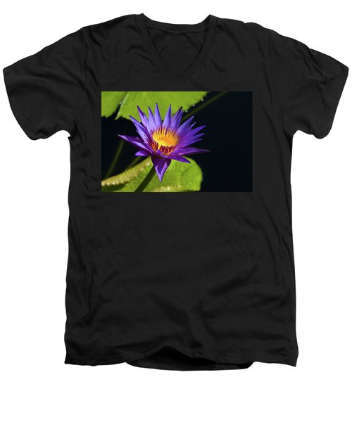 Men's V-Neck T-Shirt featuring the photograph Purple Gold by Steve Stuller