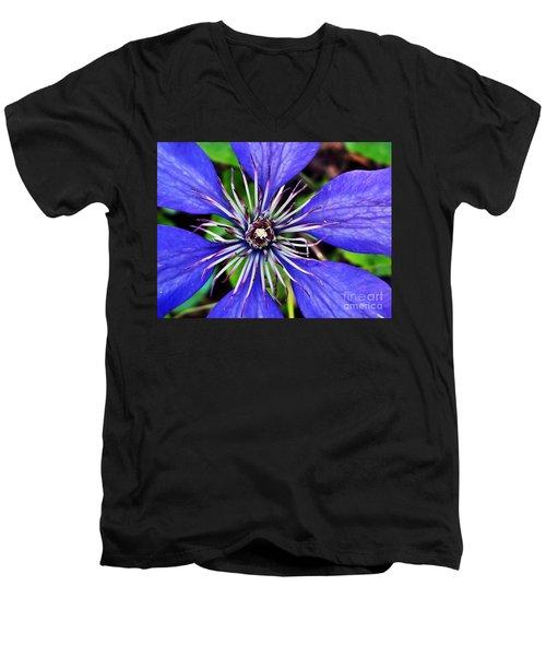 Purple Passion Men's V-Neck T-Shirt by Christy Ricafrente