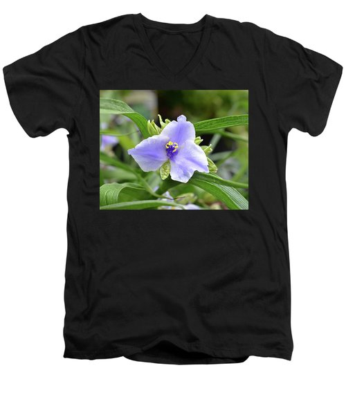 Spiderwort Men's V-Neck T-Shirt