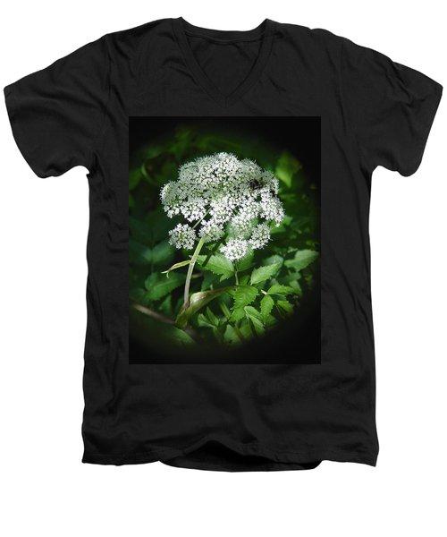 Queen Ann Lace Men's V-Neck T-Shirt