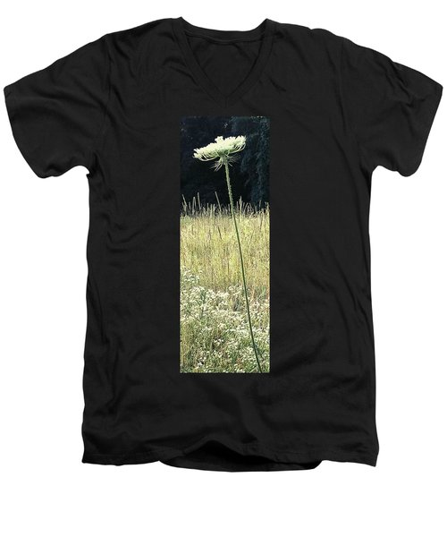 Queen Anne Men's V-Neck T-Shirt