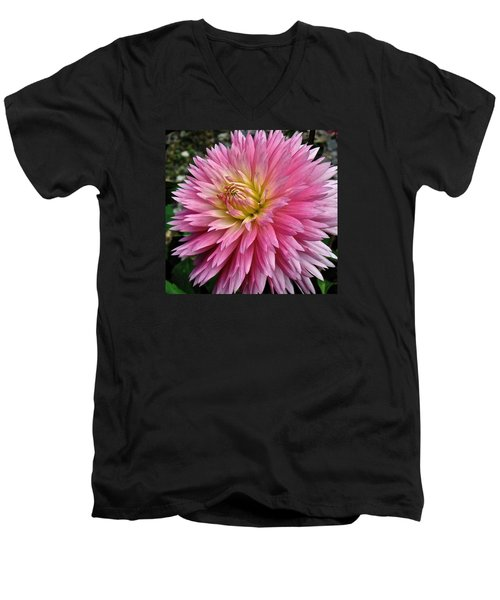 Radiant Dahlia  Men's V-Neck T-Shirt